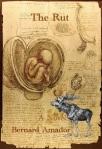 Da_Vinci_Studies_of_Embryos_Luc_Viatour3